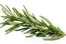 7 plantes médicinales pour fortifier les cheveux