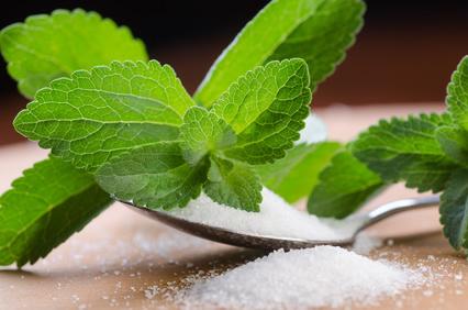 stevia-sucrant
