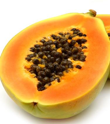 Papaye - Carica papaya