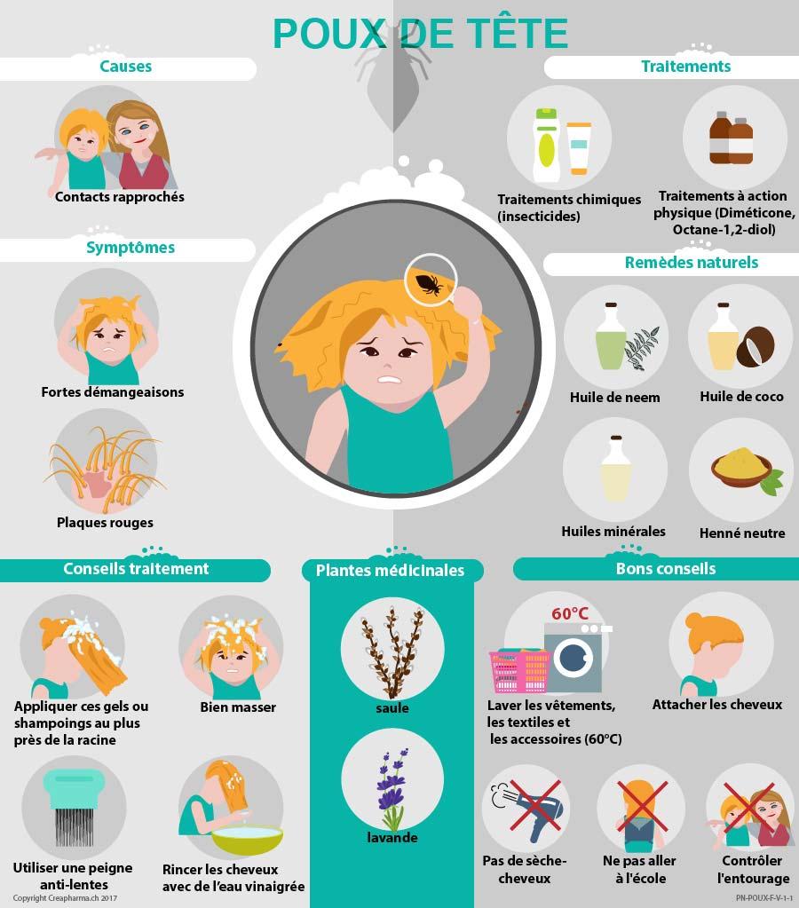Poux sympt mes traitements bons conseils creapharma - Que faire contre les moucherons ...