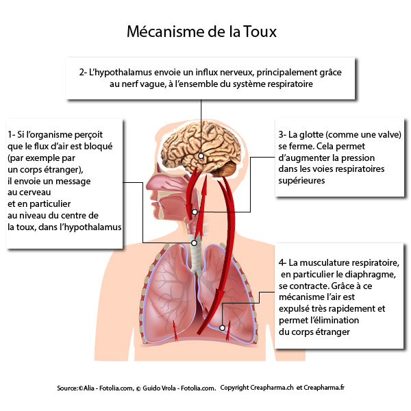 Reflux gastro-oesophagien brlures d'estomac - Symptmes