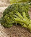 Le brocoli protège les cellules du stress et de l'Alzheimer