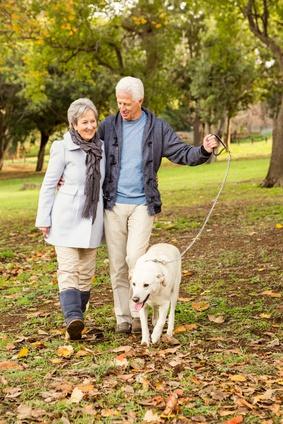 Avoir un chien pourrait prolonger l'espérance de vie, surtout après une crise cardiaque ou un accident vasculaire cérébral