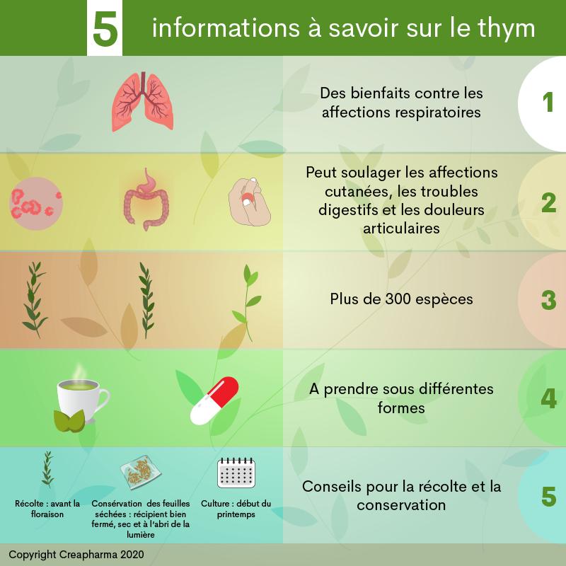 5 informations à savoir sur le thym