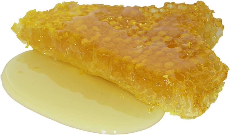 Résumé – Informations intéressantes sur le miel