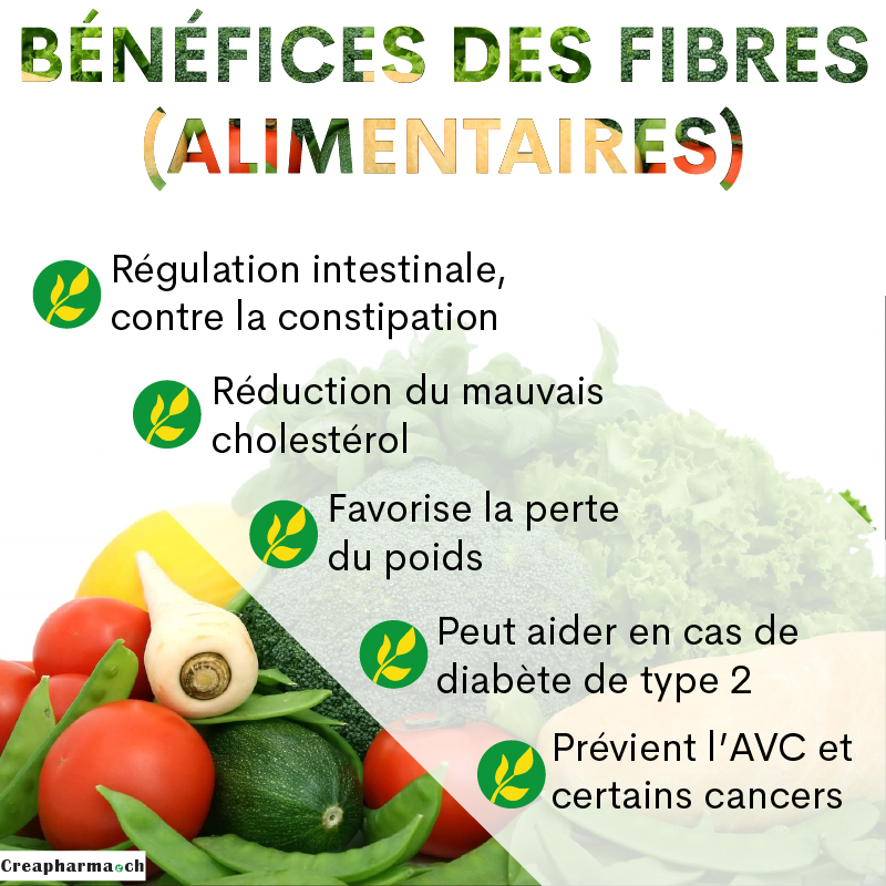 12 aliments riches en fibres