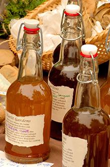 Les effets bénéfiques du vinaigre de cidre de pomme pour la santé (études)