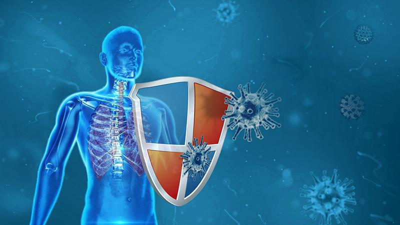 Bonne nouvelle : une forme bénigne de la Covid-19 pourrait induire une protection durable par anticorps